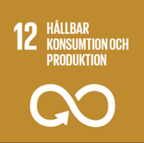 12 Hallbar Konsumtion och Produktion